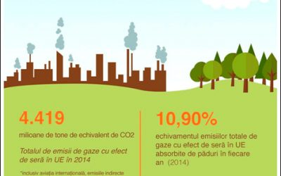 EU4ENERGY: ROUND TABLE FOR YOUNG PEOPLE IN CĂLĂRAŞI ON ENERGY EFFICIENCY AND REDUCTION OF CO2 EMISSIONS