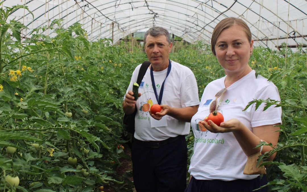 8 SCHOOLS IN THE REPUBLIC OF MOLDOVA HAVE MODERN GARDENS WITH EU SUPPORT
