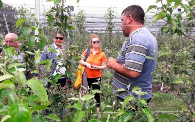 EU SUPPORT FOR CENTRES OF EXCELLENCE IN HORTICULTURE, VITICULTURE AND WINEMAKING